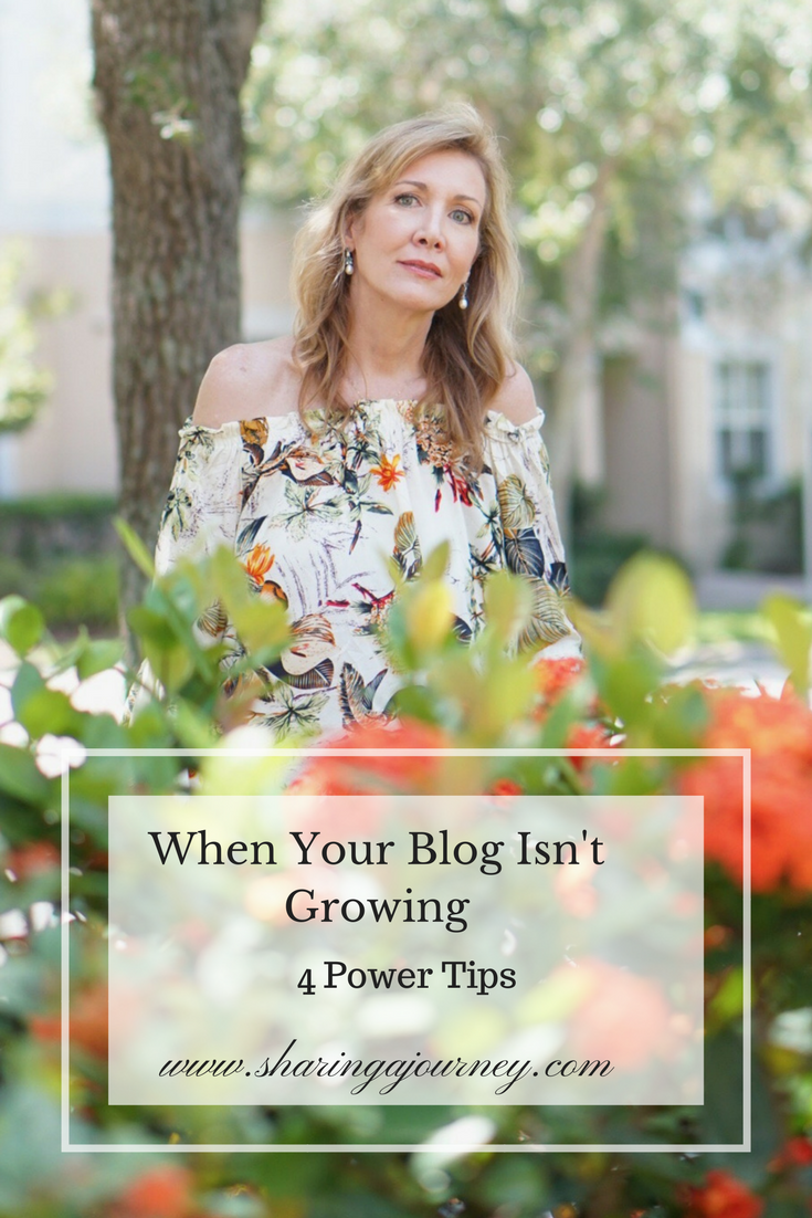 When Your Blog Isn't Growing: Power Tips from Sharing A Journey